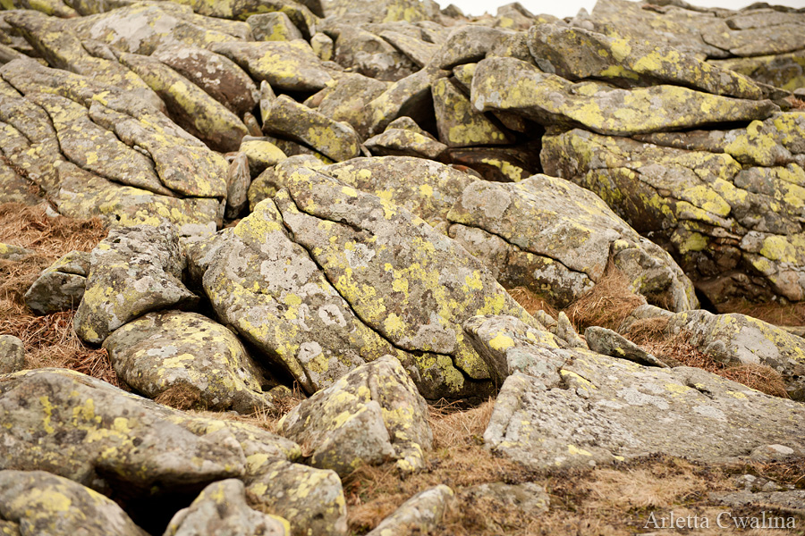 kamienie i skały na Babiej Górze
