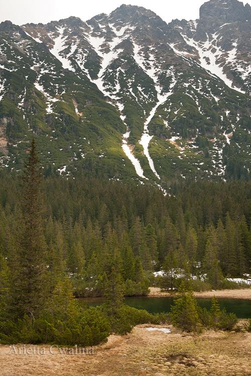 krajobraz w Tatrach
