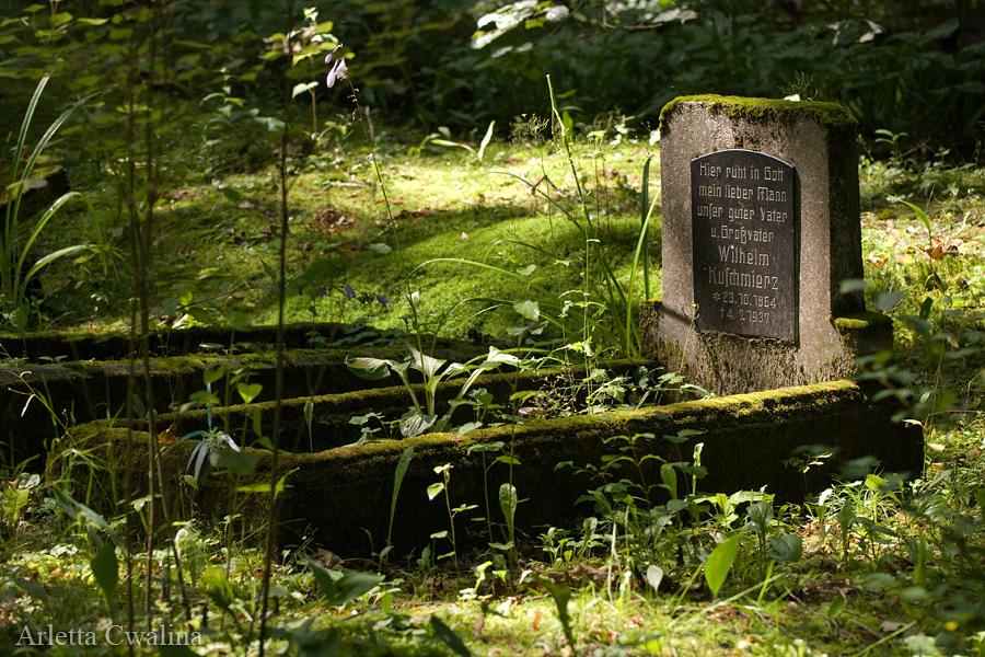 stary cmentarz niemiecki