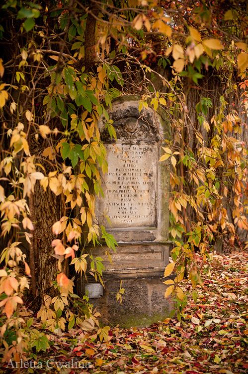 stary grób