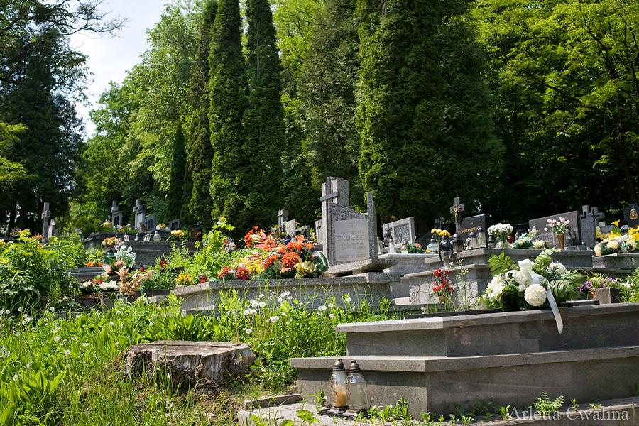 cmentarze_kazimierz_dolny_07