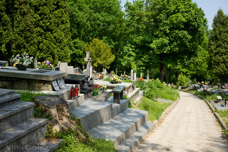 cmentarze_kazimierz_dolny_08