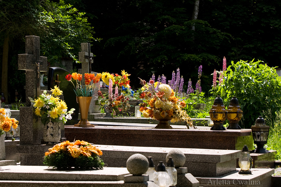 cmentarz katolicki w Kazimierzu Dolnym