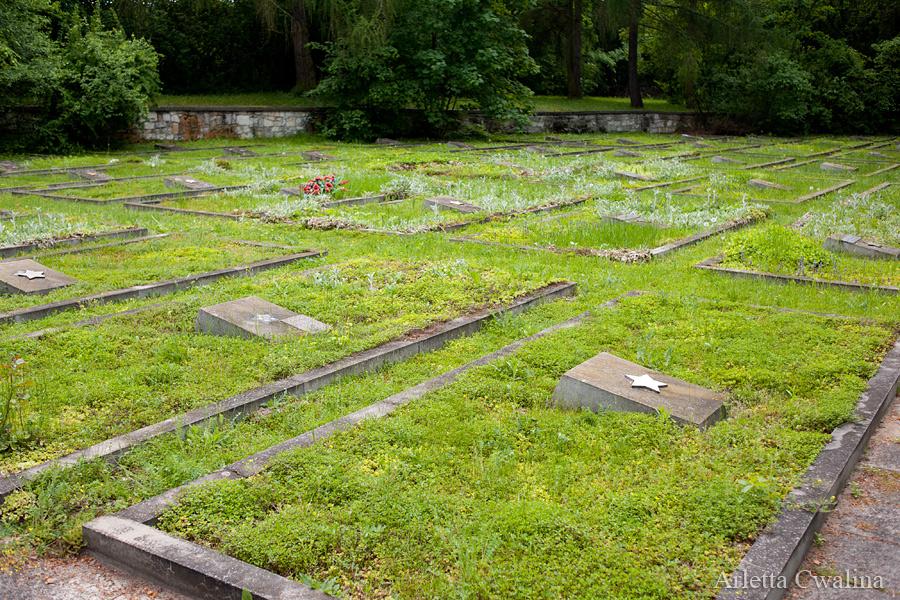 cmentarze_kazimierz_dolny_18