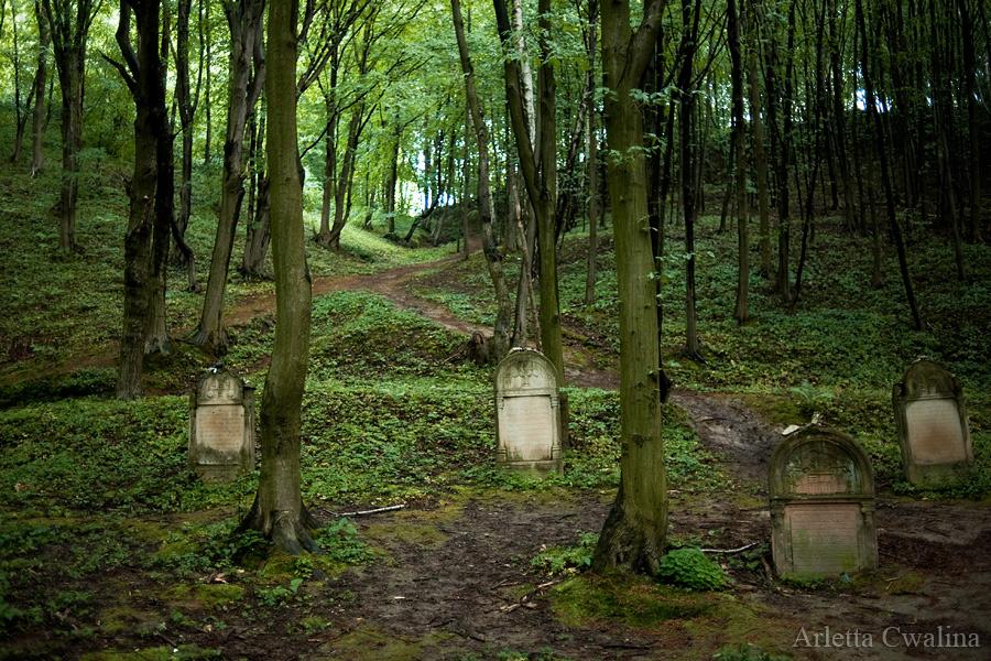 cmentarze_kazimierz_dolny_26