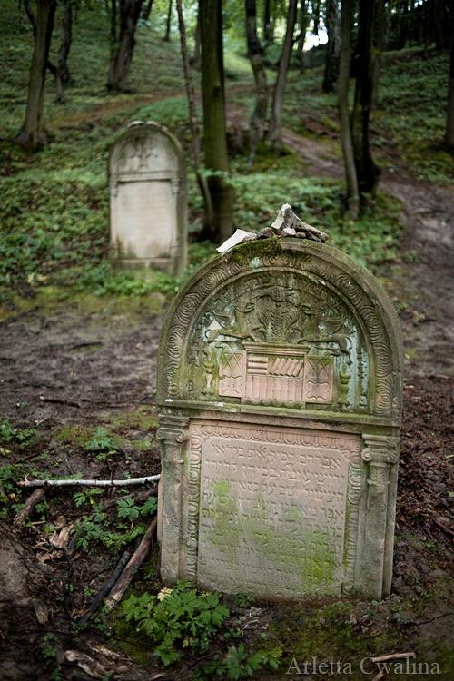 cmentarze_kazimierz_dolny_27