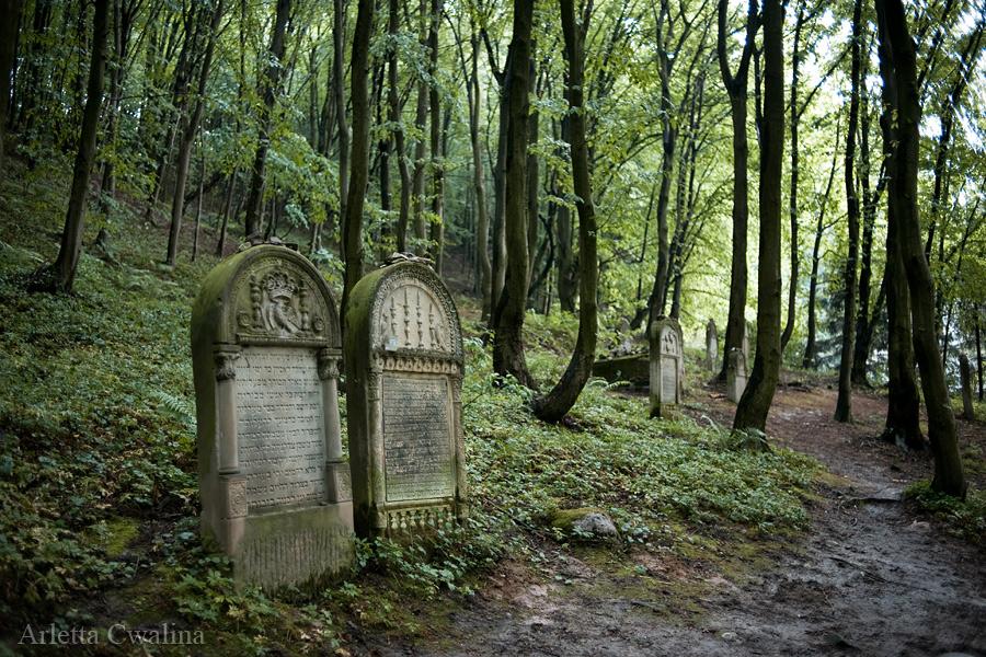 cmentarze_kazimierz_dolny_28