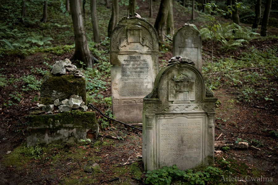 cmentarze_kazimierz_dolny_29