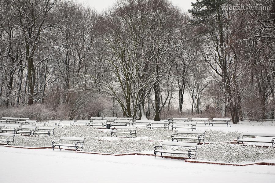 Łazienki Królewskie pod śniegiem