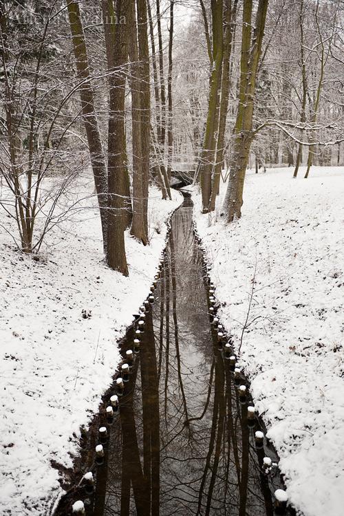 Łazienki Królewskie w śniegu