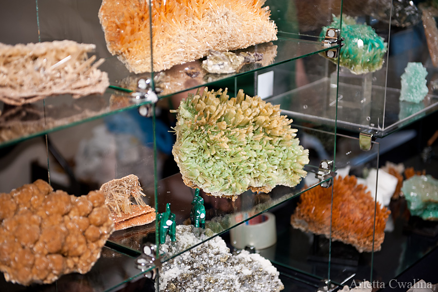 mineral_expo_29
