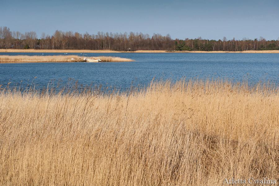 zatoka we Władysławowie