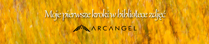 agencja Arcangel
